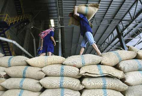 Kho hàng cà phê Arabica chất lượng cao xuất khẩu của Nicaragua