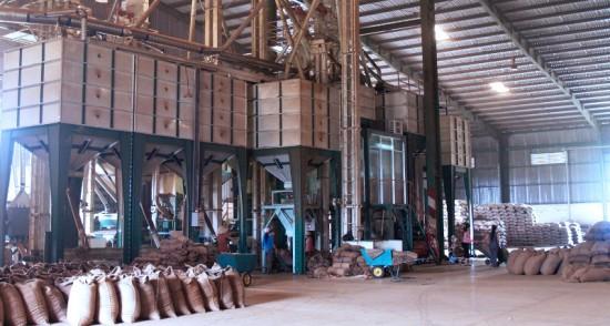 Nhà máy chế biến cà phê xuất khẩu tại Tây nguyên